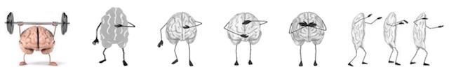 Bewegungen sind Reflexionen der Absicht des Gehirns.