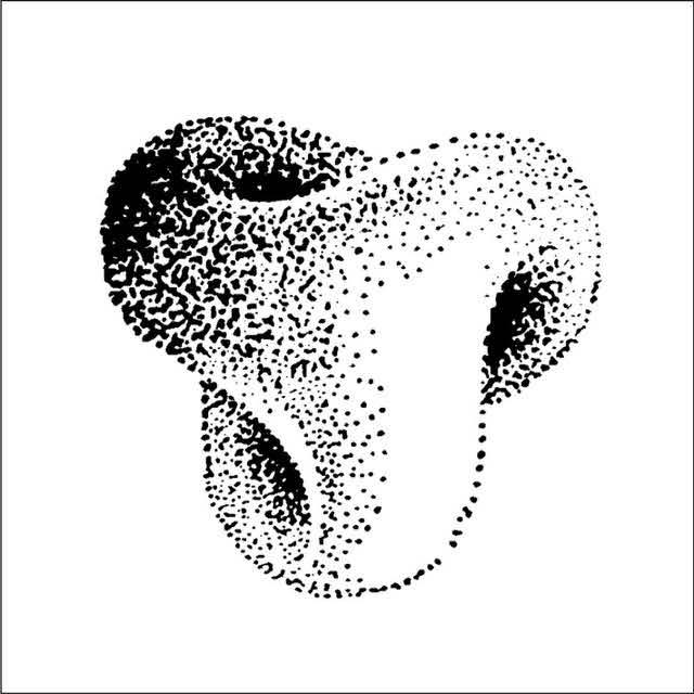 Bild6_Innenohr_Rahmen