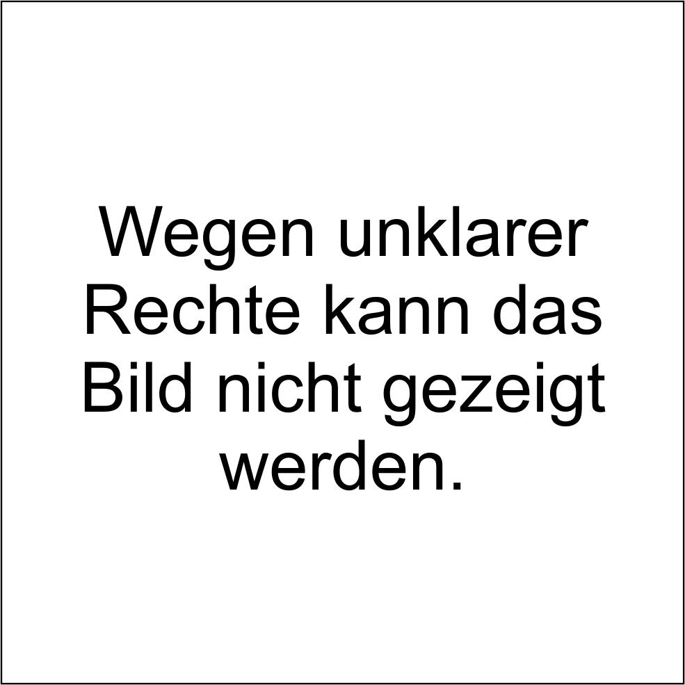 Bild7b_Rechte