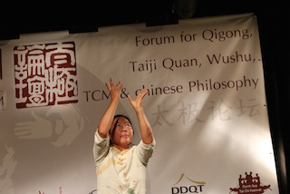 Bilder des Taiji Forum 2016