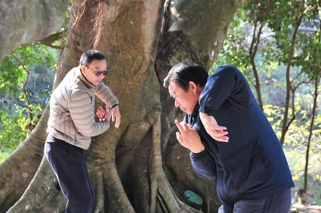 Wasser-Taiji nach Wang Zhuanghong