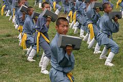 KungFu - harte Arbeit
