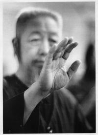 Professor Cheng Man Ching. Foto:Ken van Sickle