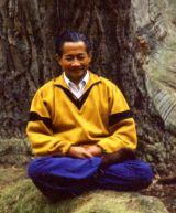 Qigong Lehrer