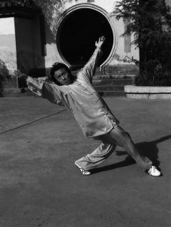 Kampfkunstschulen