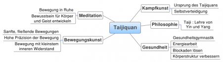 Der klassische Chen-Stil stellt ein vollständiges Taijiquan-System dar, dass fünf Aspekte in sich vereint: Philosophie, Gesundheitslehre, Meditation, Bewegungskunst und Kampfkunst
