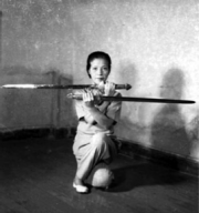 Wu Stil Schwert