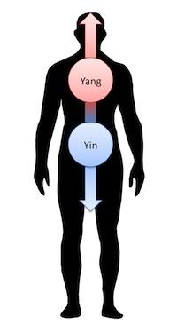 Yin-Yang-oben-unten