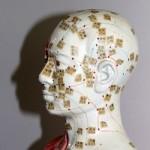 TCM: Akupunktur, Tuina, Diätik, Qigong