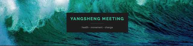 Yangsheng Meeting